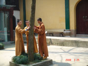 Monks in the Lingyin Temple