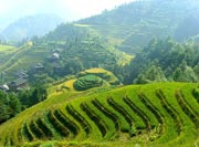 Beautiful Scenery,Terraced Fields of Longji